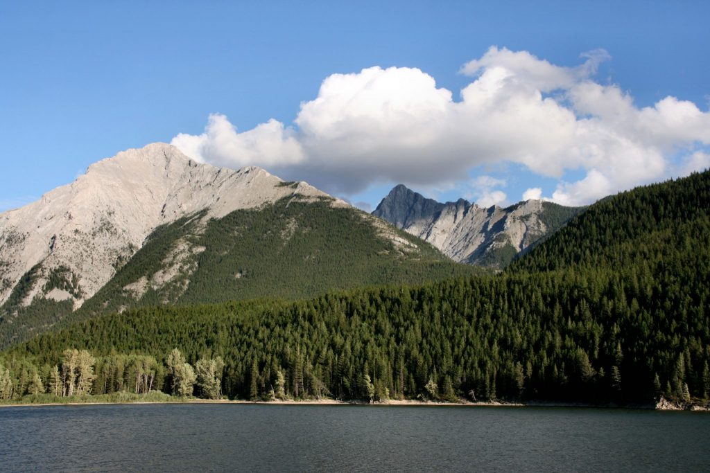 Read more on A Guide to Crowsnest Pass Accommodations and Activities