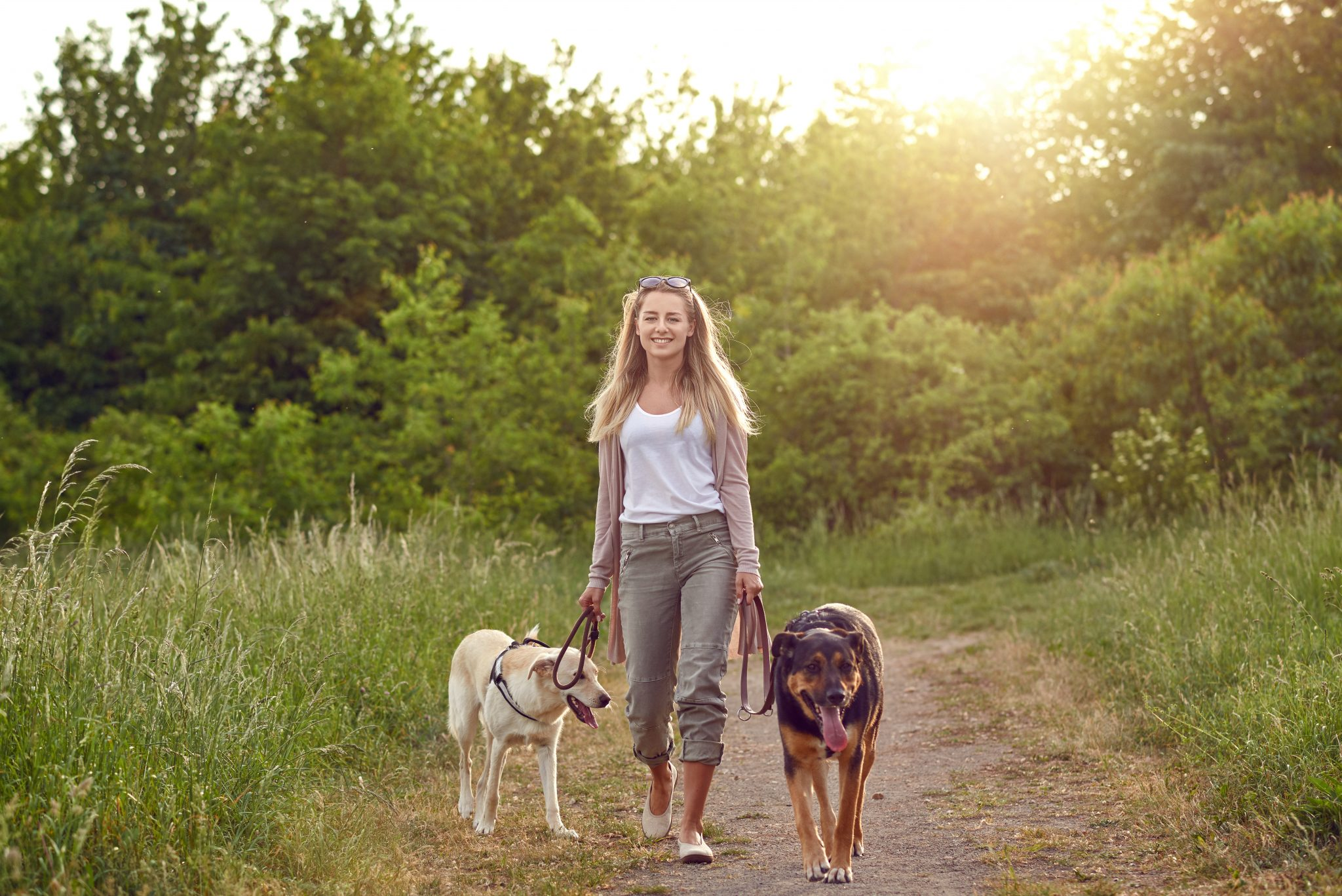 Pet-Friendly Hotels in Whitecourt Alberta | Kanata Whitecourt 2