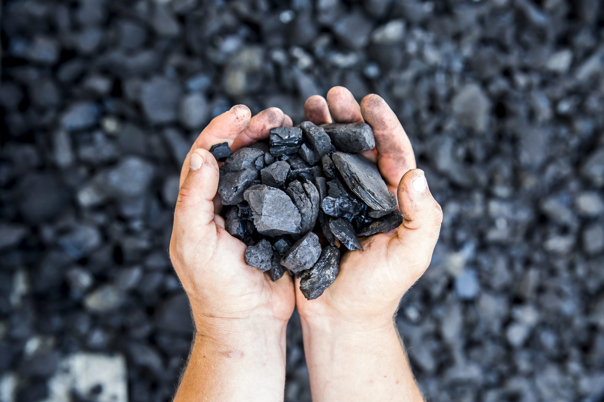 person holding black coal blairmore hotels