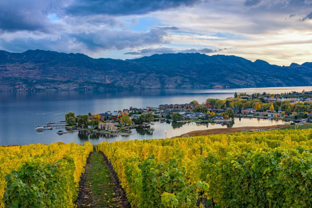 Staying at an Okanagan Hotel? What To Know Before You Go to Kelowna