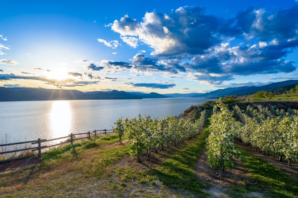 Read more on Essential Kelowna Tips When Exploring the Area