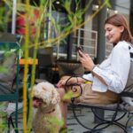 Key Kelowna Sightseeing Tips for Travelling With Your Dog