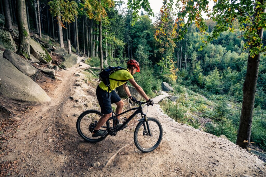 Read more on Essential Things to Do in Invermere This Summer
